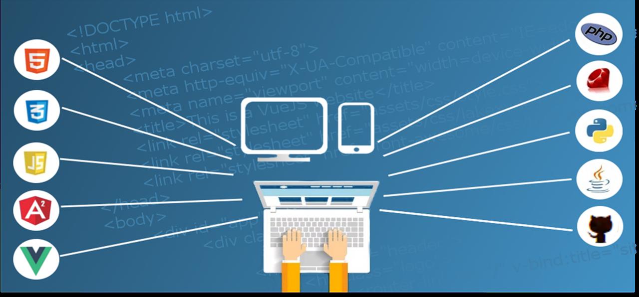 web, web developer, full stack developer